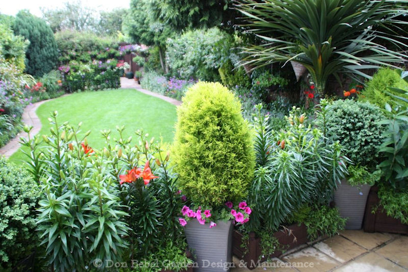 Don bebel garden design maintenance for Back garden designs uk